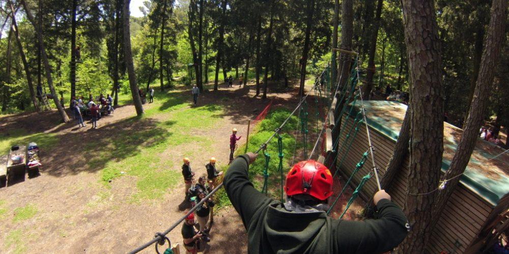 Adrenalina al Parcallario……2019